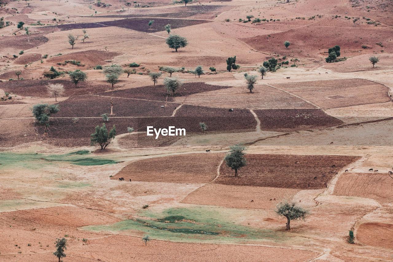 HIGH ANGLE VIEW OF DESERT