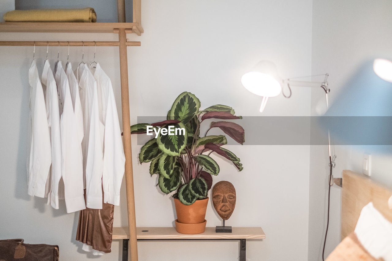 POTTED PLANT ON WHITE TABLE AT HOME