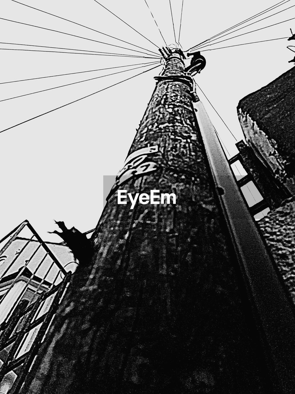 low angle view, cable, connection, day, electricity pylon, outdoors, built structure, electricity, architecture, sky, no people, clear sky, technology, nature, animal themes
