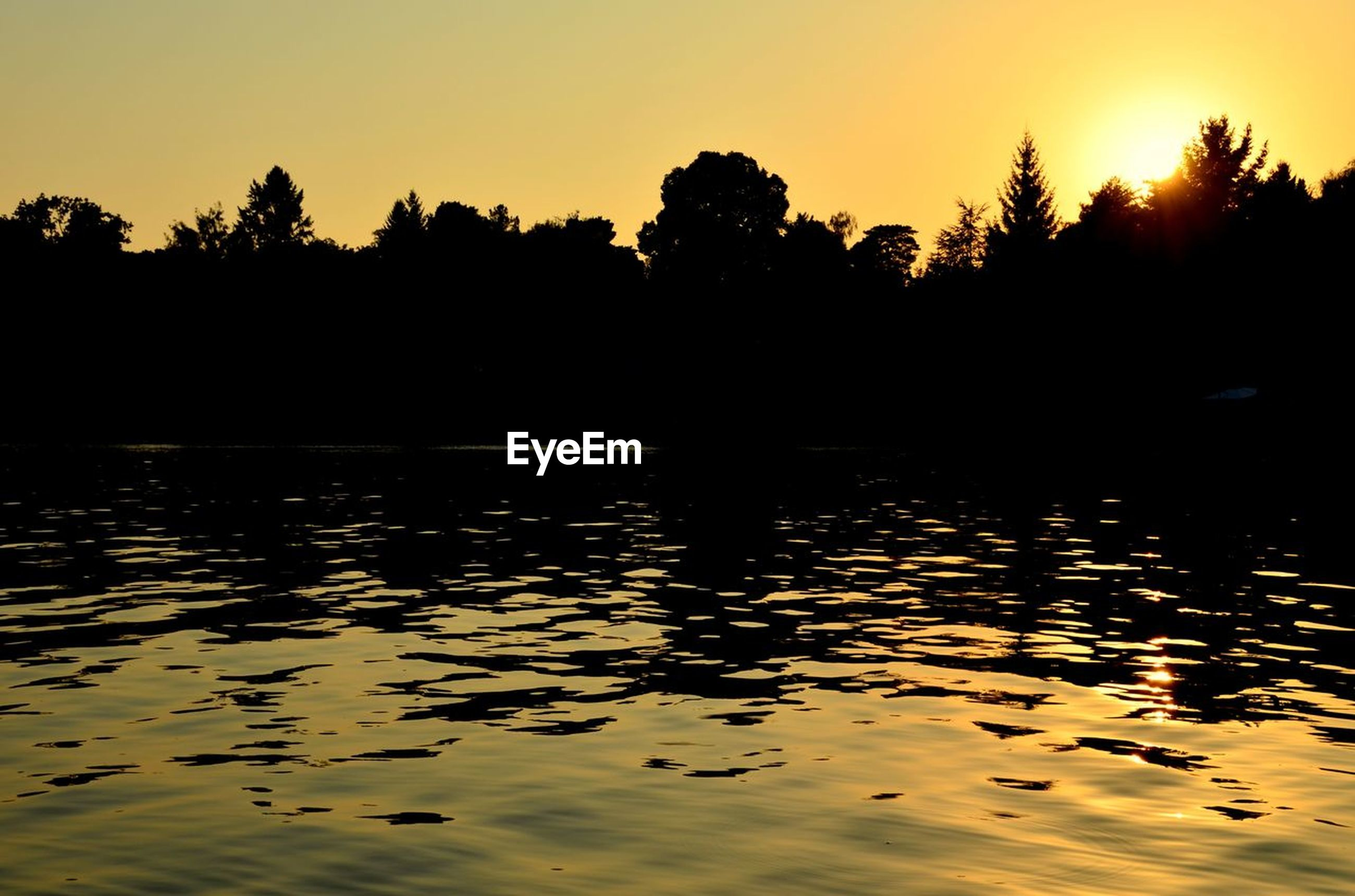 Scenic view of river and trees during sunset