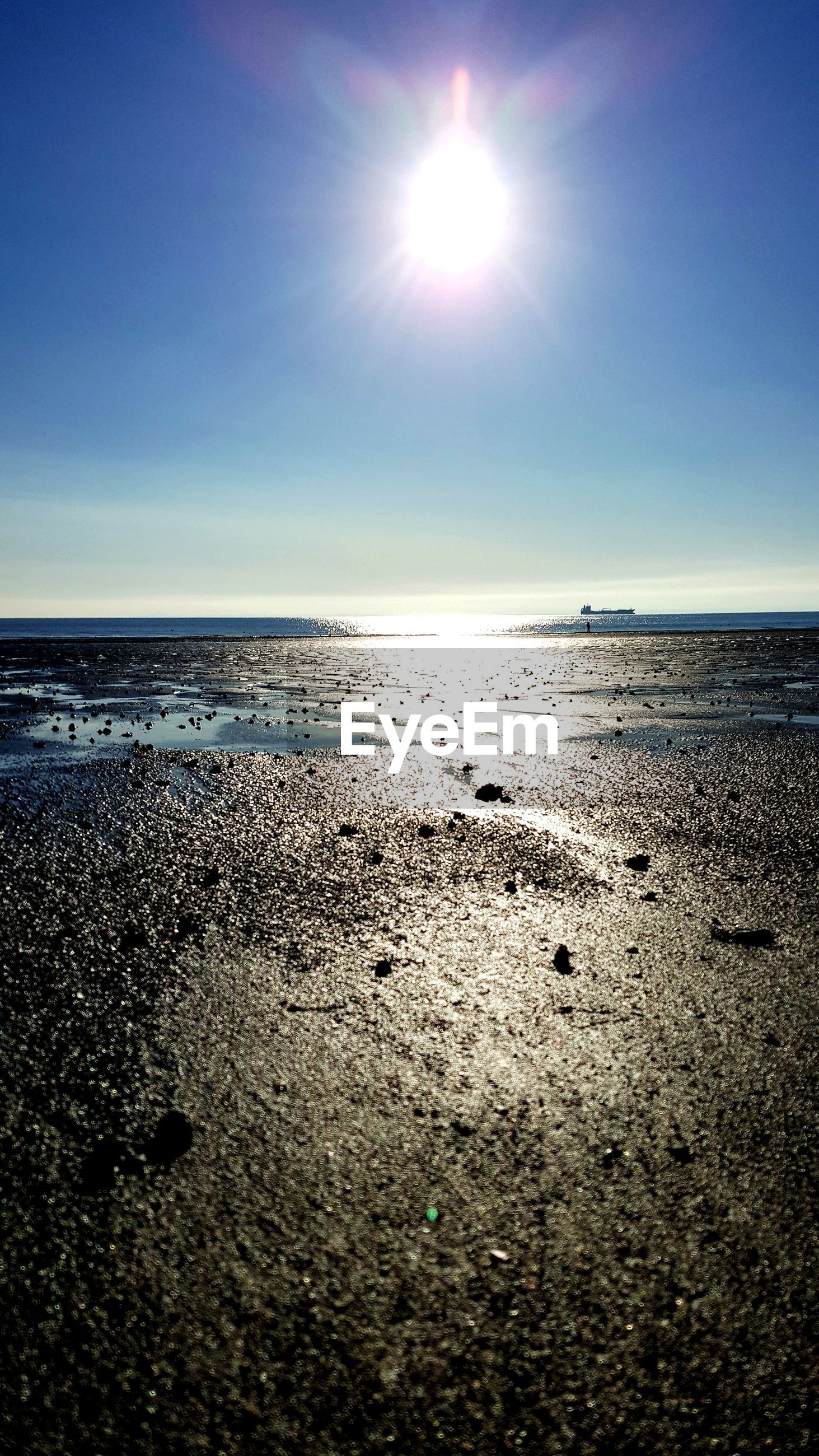 sea, horizon over water, water, beach, beauty in nature, sun, scenics, nature, tranquility, tranquil scene, sunlight, sky, shore, sand, idyllic, outdoors, no people, clear sky, day