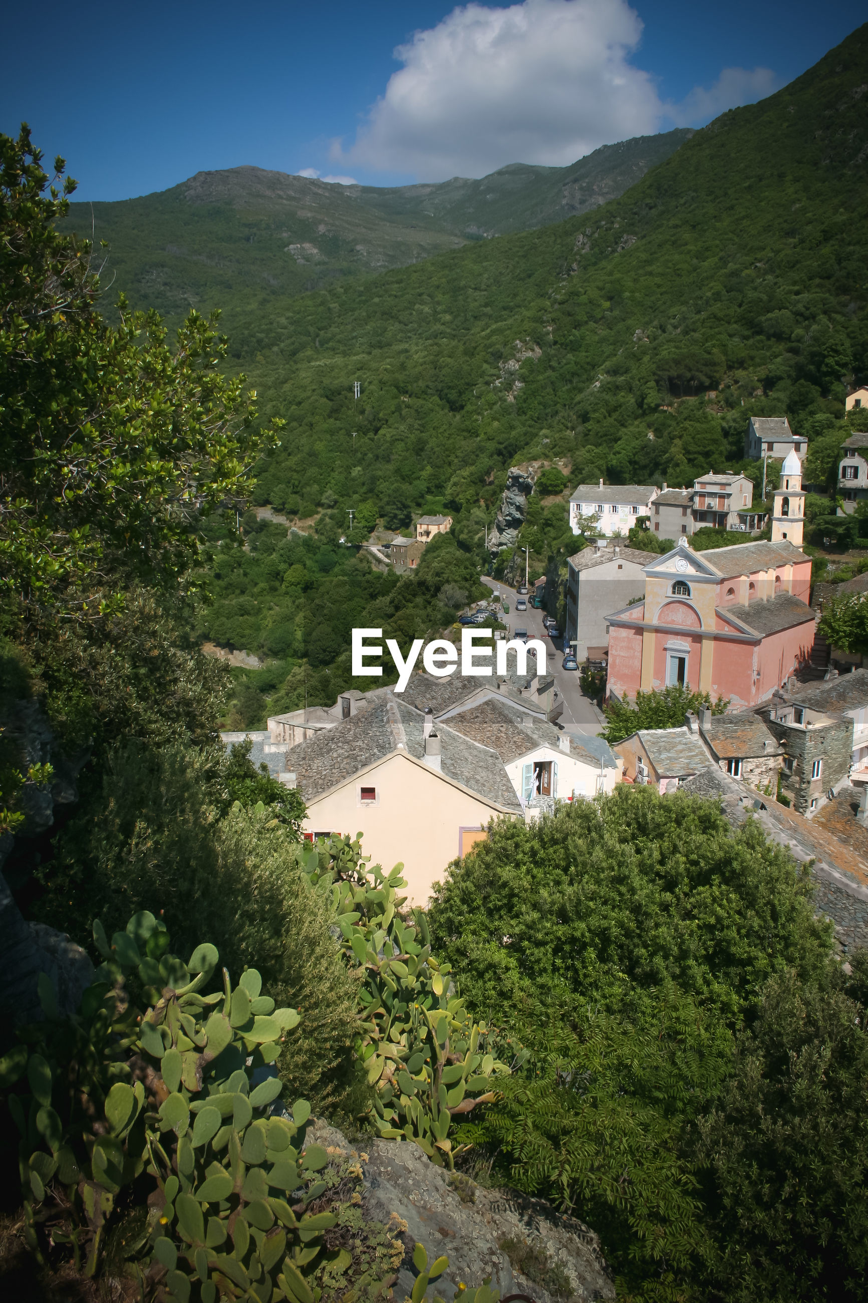 HIGH ANGLE VIEW OF BUILDINGS AND TREES ON MOUNTAIN