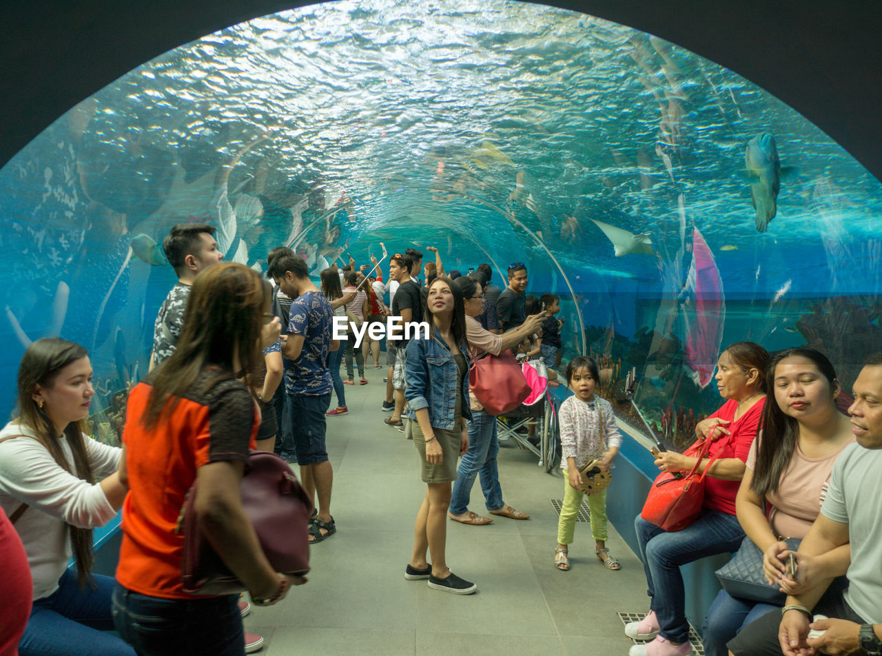 women, group of people, tank, aquarium, indoors, animals in captivity, crowd, real people, full length, men, water, adult, underwater, swimming, fish, sea, casual clothing, large group of people, architecture, watching, marine