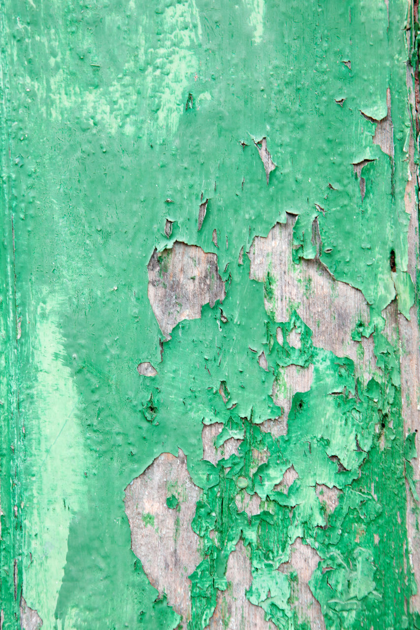 green color, old, close-up, textured, backgrounds, peeled, no people, weathered, peeling off, full frame, run-down, day, wall - building feature, built structure, architecture, decline, deterioration, paint, damaged, wood - material, outdoors, turquoise colored, textured effect