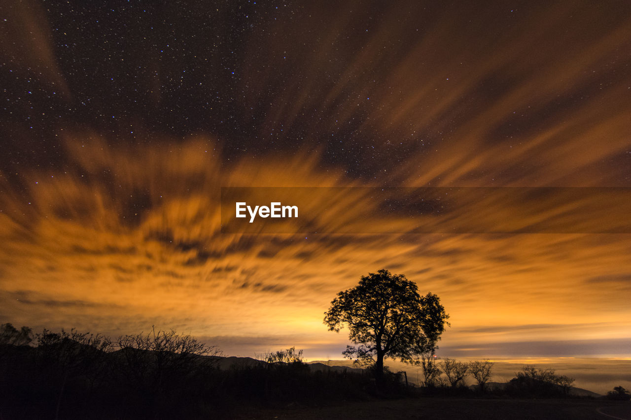 sky, scenics - nature, beauty in nature, tree, tranquility, plant, tranquil scene, star - space, astronomy, orange color, cloud - sky, silhouette, sunset, no people, space, idyllic, night, nature, environment, non-urban scene, outdoors
