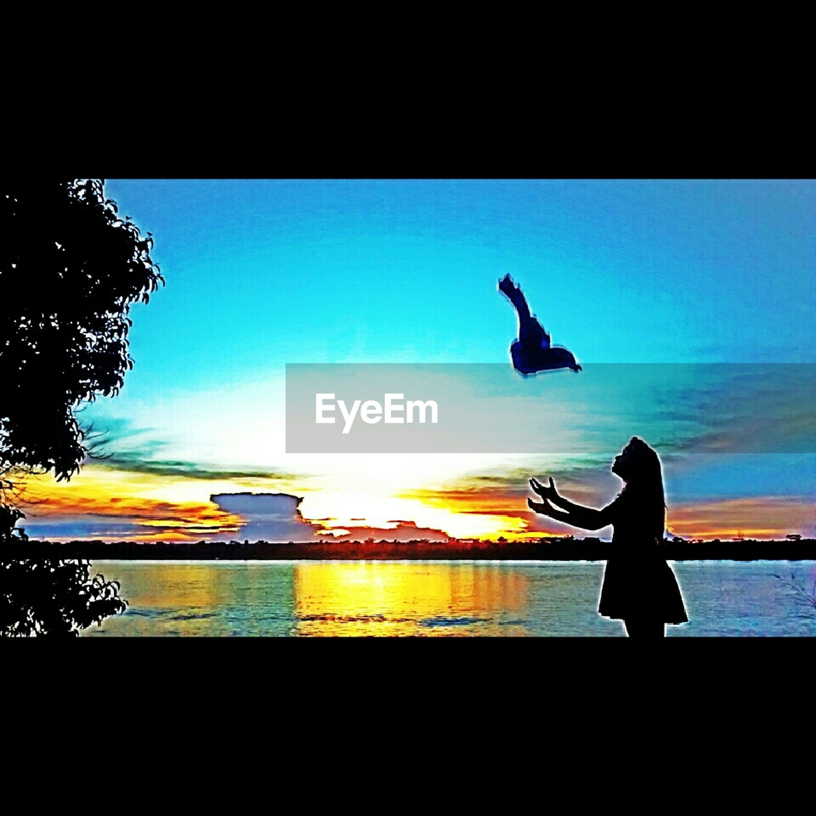 silhouette, sunset, full length, lifestyles, leisure activity, sky, men, orange color, standing, bird, side view, nature, rear view, outdoors, one animal, outline, person, jumping