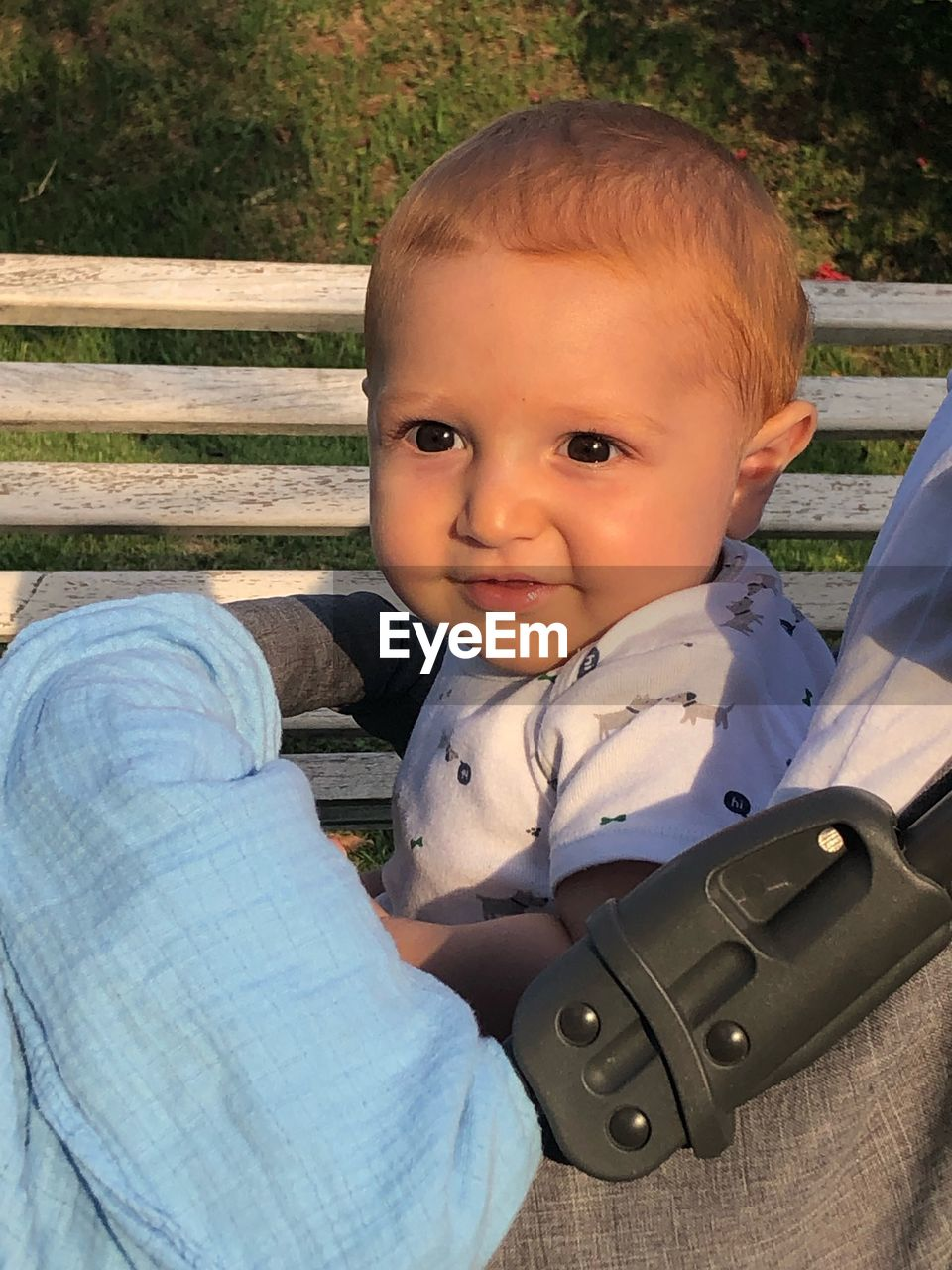 Portrait of cute baby boy on bench in park