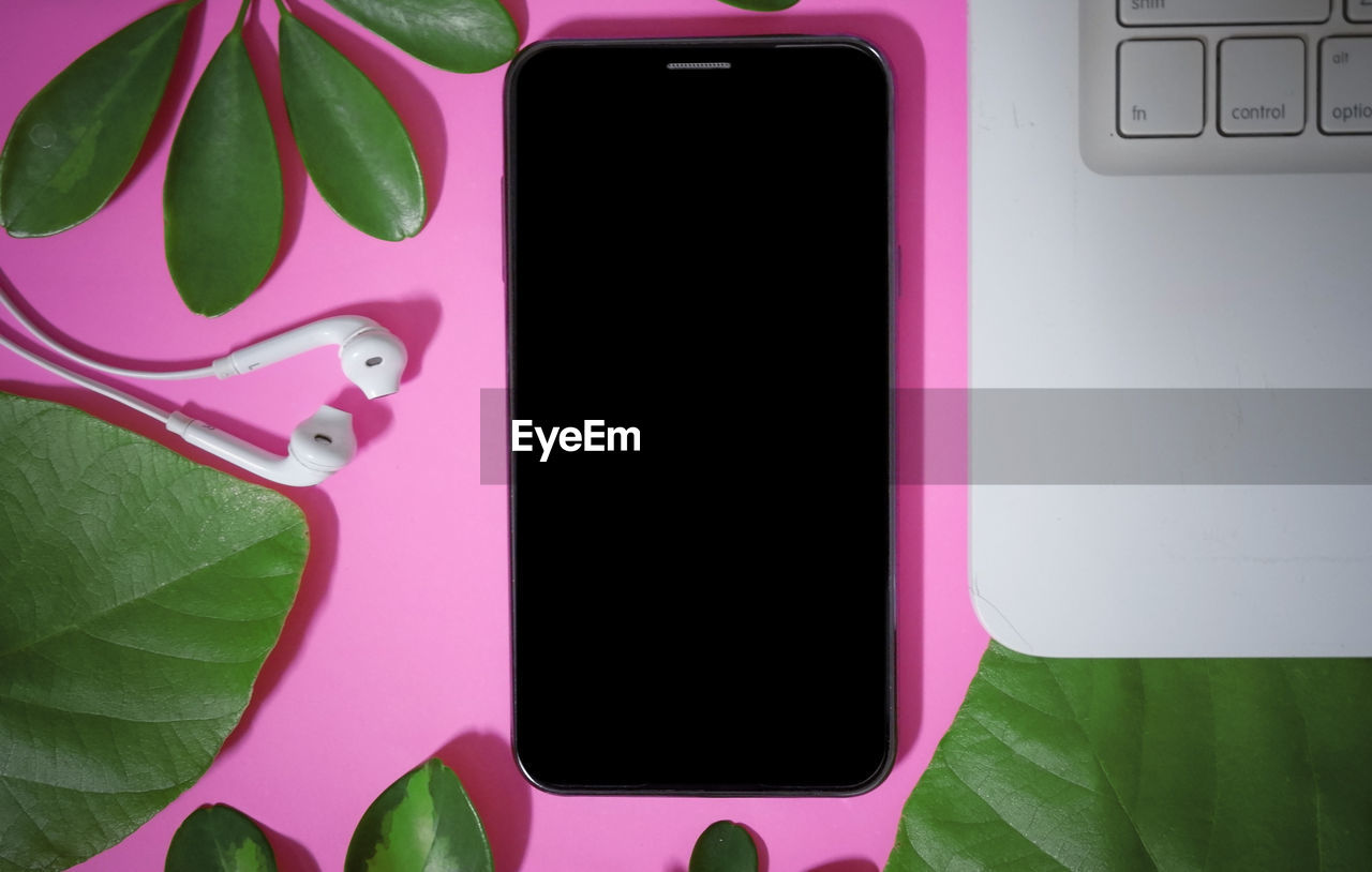pink color, technology, close-up, green color, wireless technology, leaf, screen, plant part, communication, no people, portable information device, connection, indoors, mobile phone, smart phone, touch screen, plant, directly above, computer equipment, nature