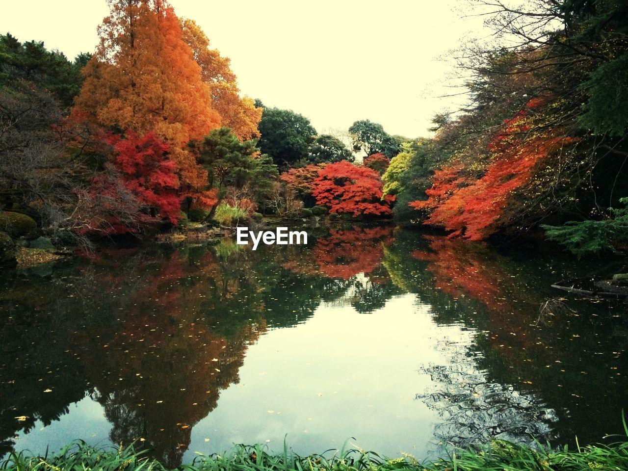 Scenic view of lake with trees reflection during autumn