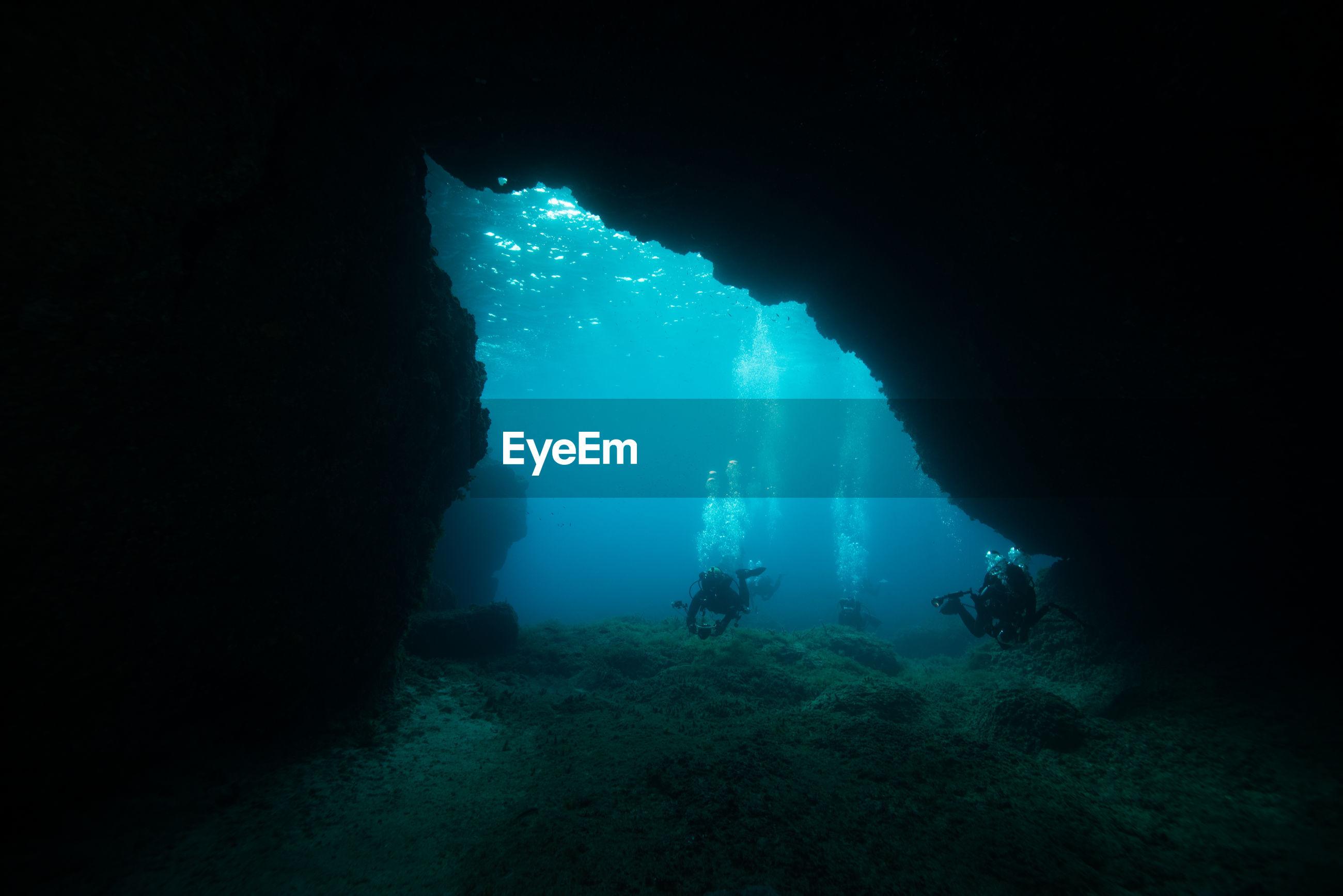 Scuba divers undersea