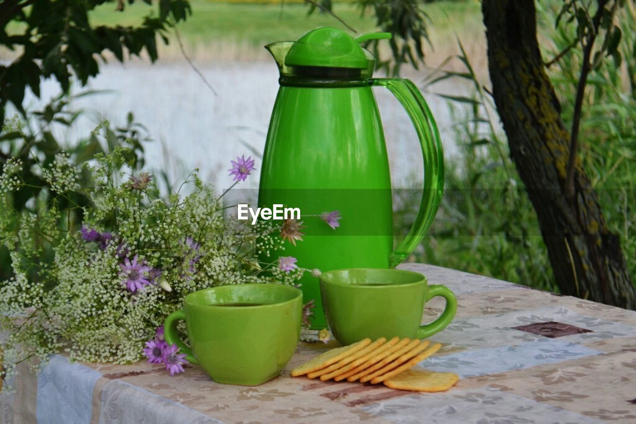 plant, growth, flowering plant, flower, nature, table, no people, container, green color, freshness, food and drink, watering can, still life, beauty in nature, refreshment, potted plant, day, cup, outdoors, close-up, glass, flower pot