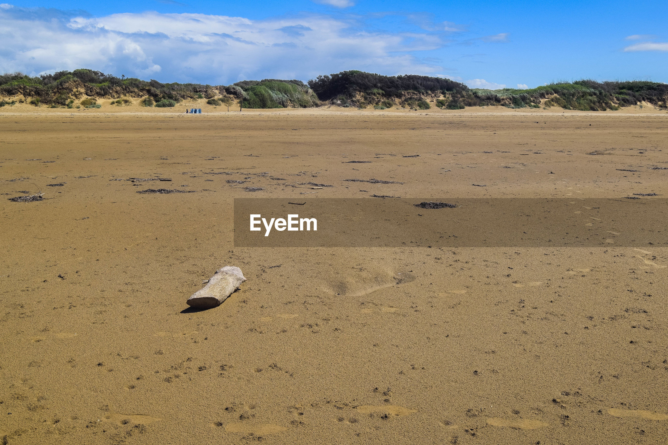 View of flotsam  and jetsom on beach