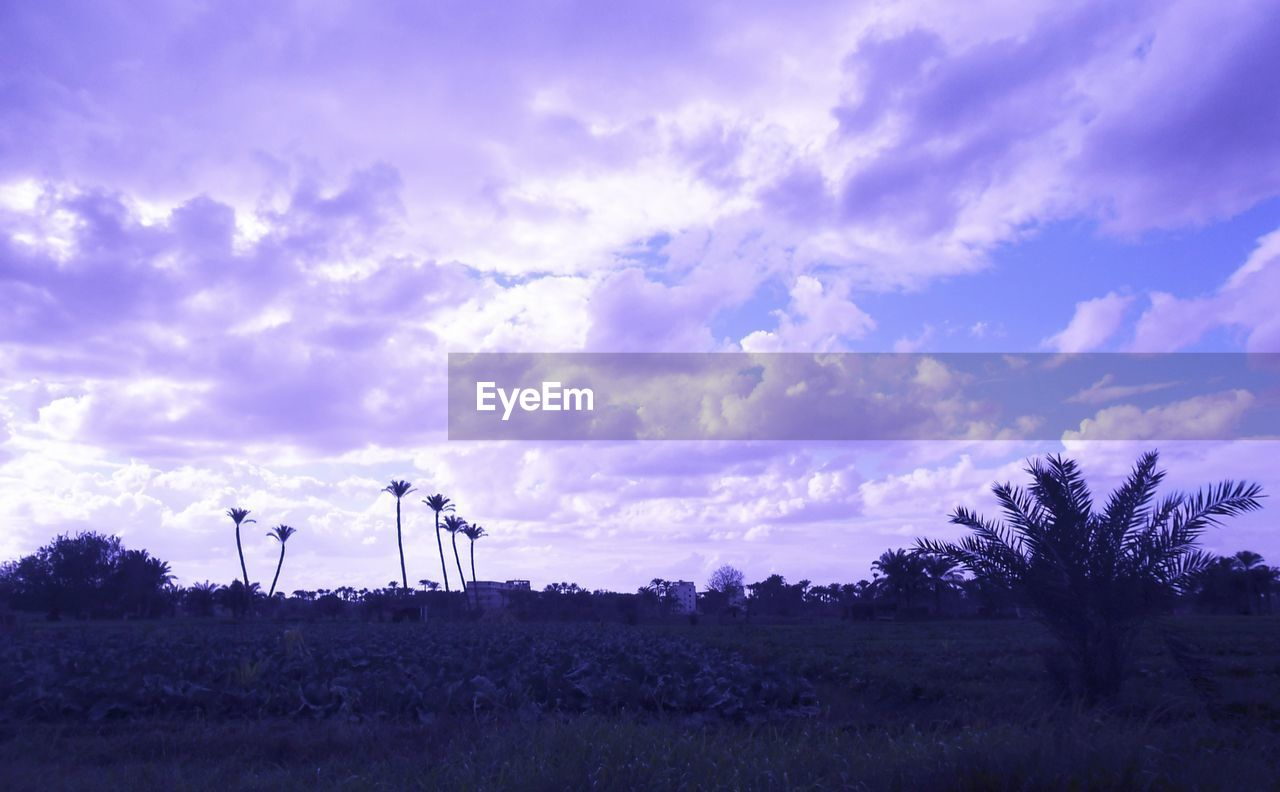 sky, cloud - sky, field, nature, tree, landscape, no people, outdoors, tranquility, scenics, beauty in nature, wind power, technology, day, wind turbine, windmill, oil well, industrial windmill, oil pump