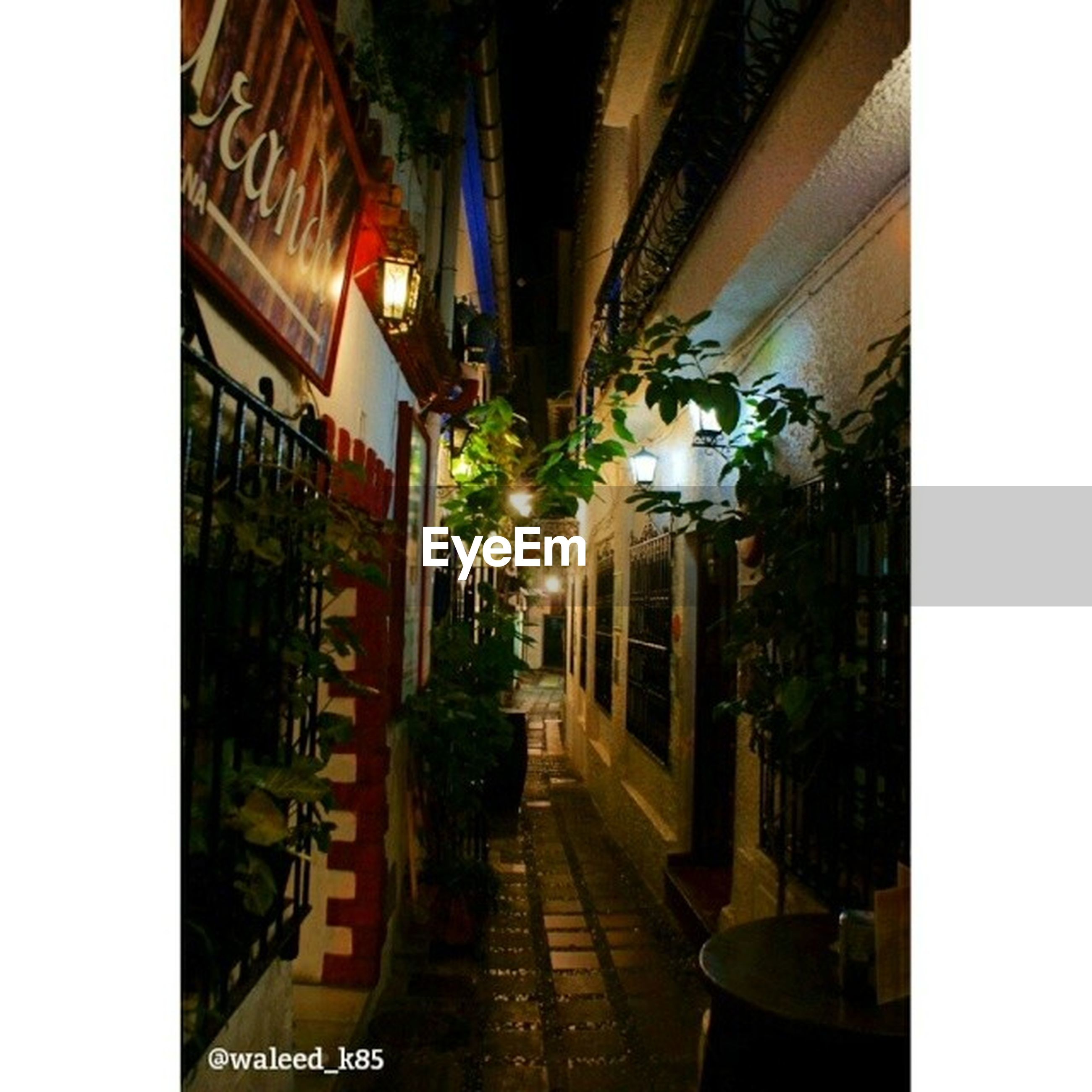 architecture, built structure, building exterior, transfer print, illuminated, lighting equipment, auto post production filter, potted plant, city, night, street light, residential structure, building, house, residential building, the way forward, no people, plant, street, outdoors