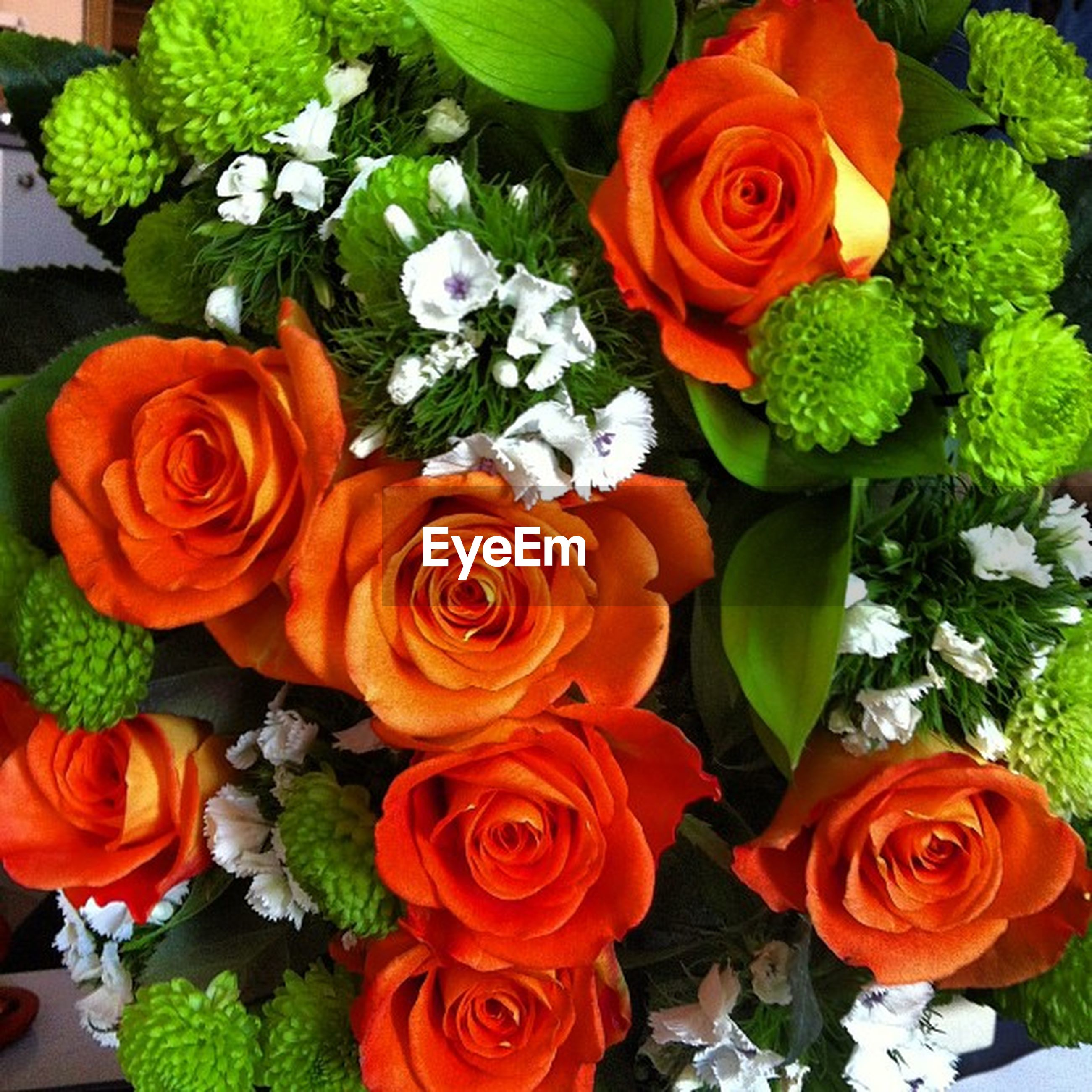 flower, freshness, rose - flower, petal, fragility, flower head, beauty in nature, rose, growth, high angle view, bouquet, multi colored, nature, plant, bunch of flowers, indoors, blooming, full frame, leaf, orange color