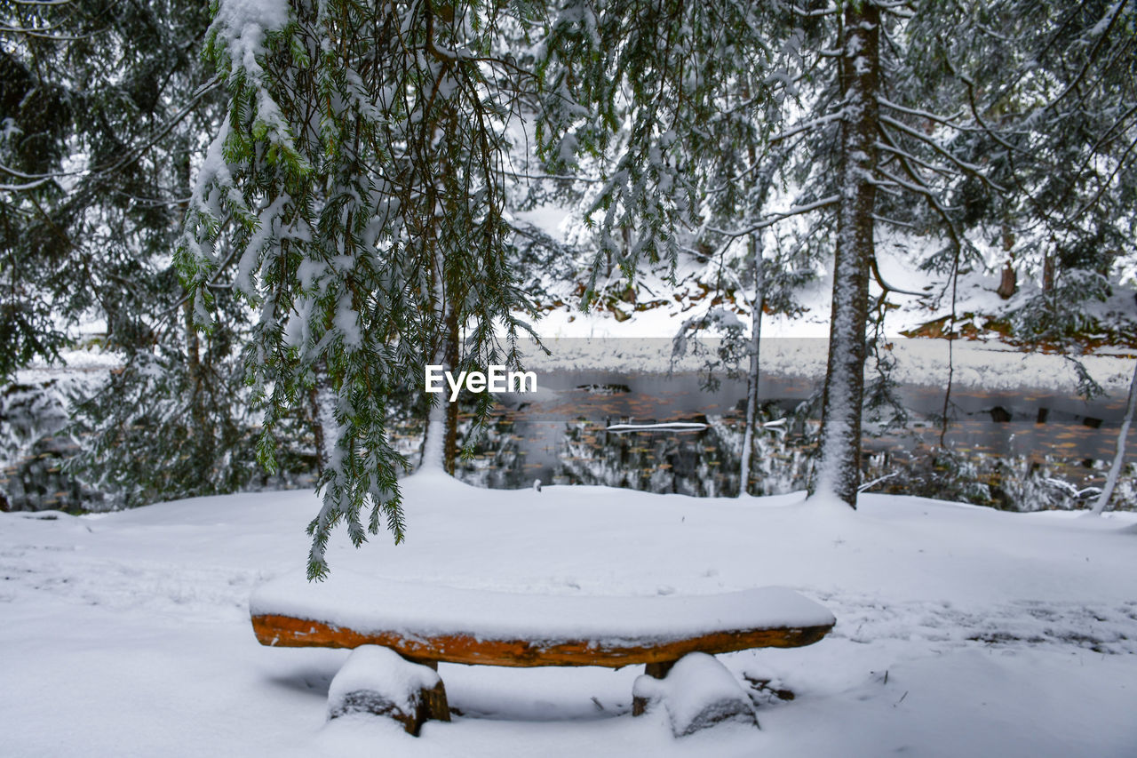 snow, winter, cold temperature, weather, nature, tree, white color, cold, tranquility, beauty in nature, scenics, frozen, outdoors, tranquil scene, landscape, no people, extreme weather, field, day, bare tree, snowdrift, branch