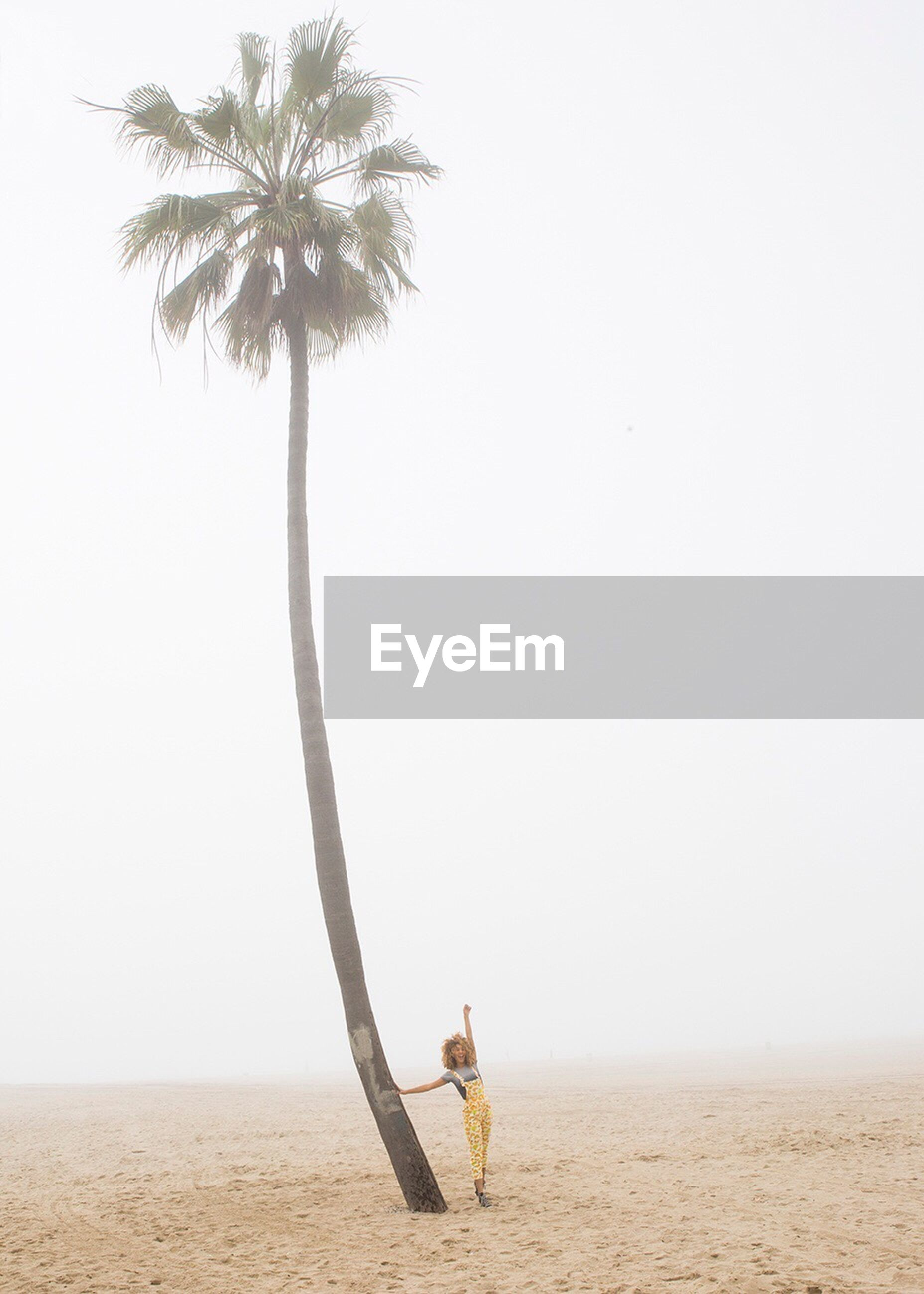 sand, beach, palm tree, one person, day, leisure activity, full length, clear sky, lifestyles, real people, beauty in nature, young women, standing, outdoors, nature, young adult, scenics, desert, sky, people