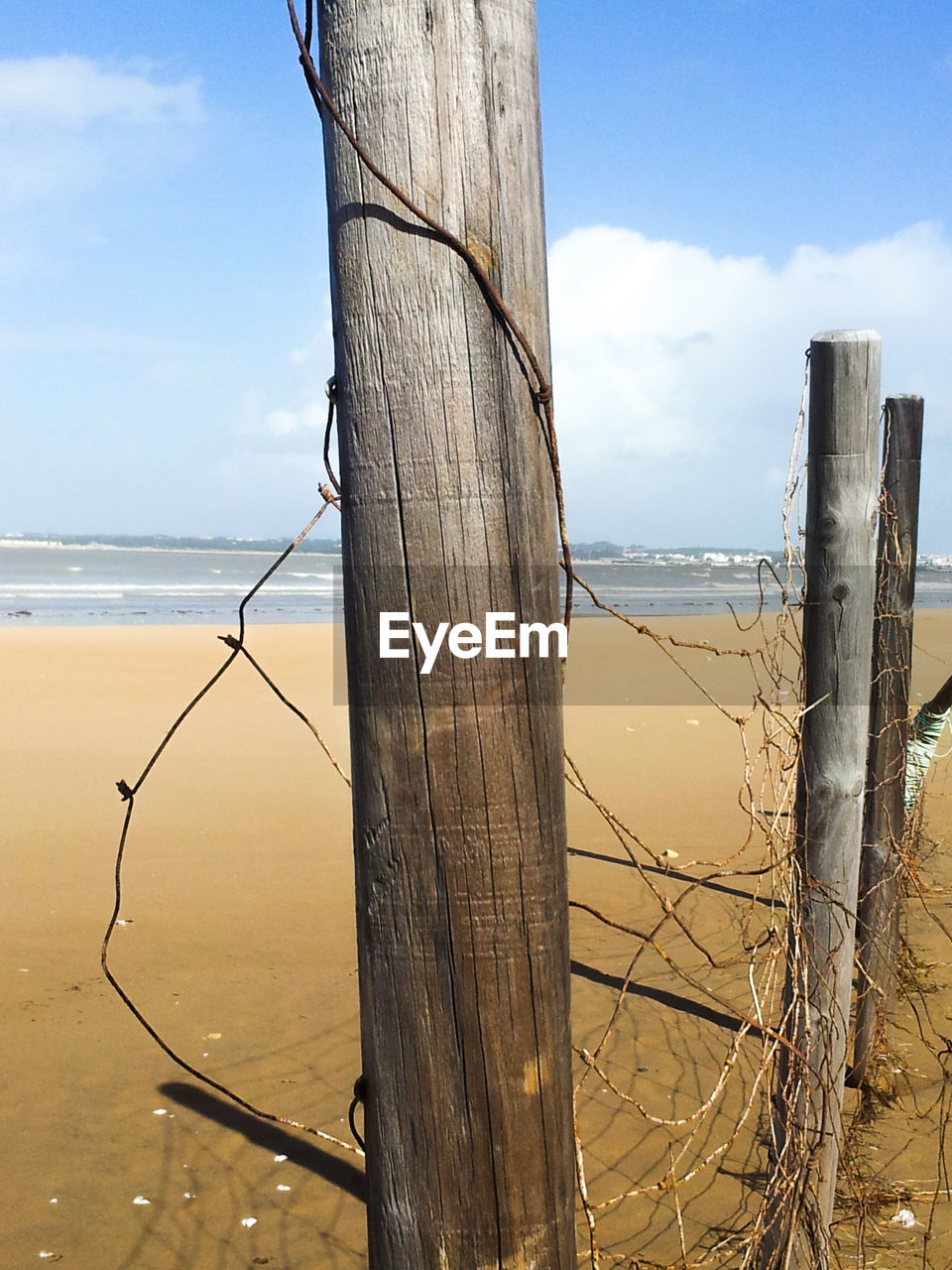 sky, sea, land, water, beach, wood - material, nature, scenics - nature, horizon over water, horizon, cloud - sky, tranquility, day, beauty in nature, tree, trunk, tree trunk, fence, no people, outdoors, wooden post, post, driftwood