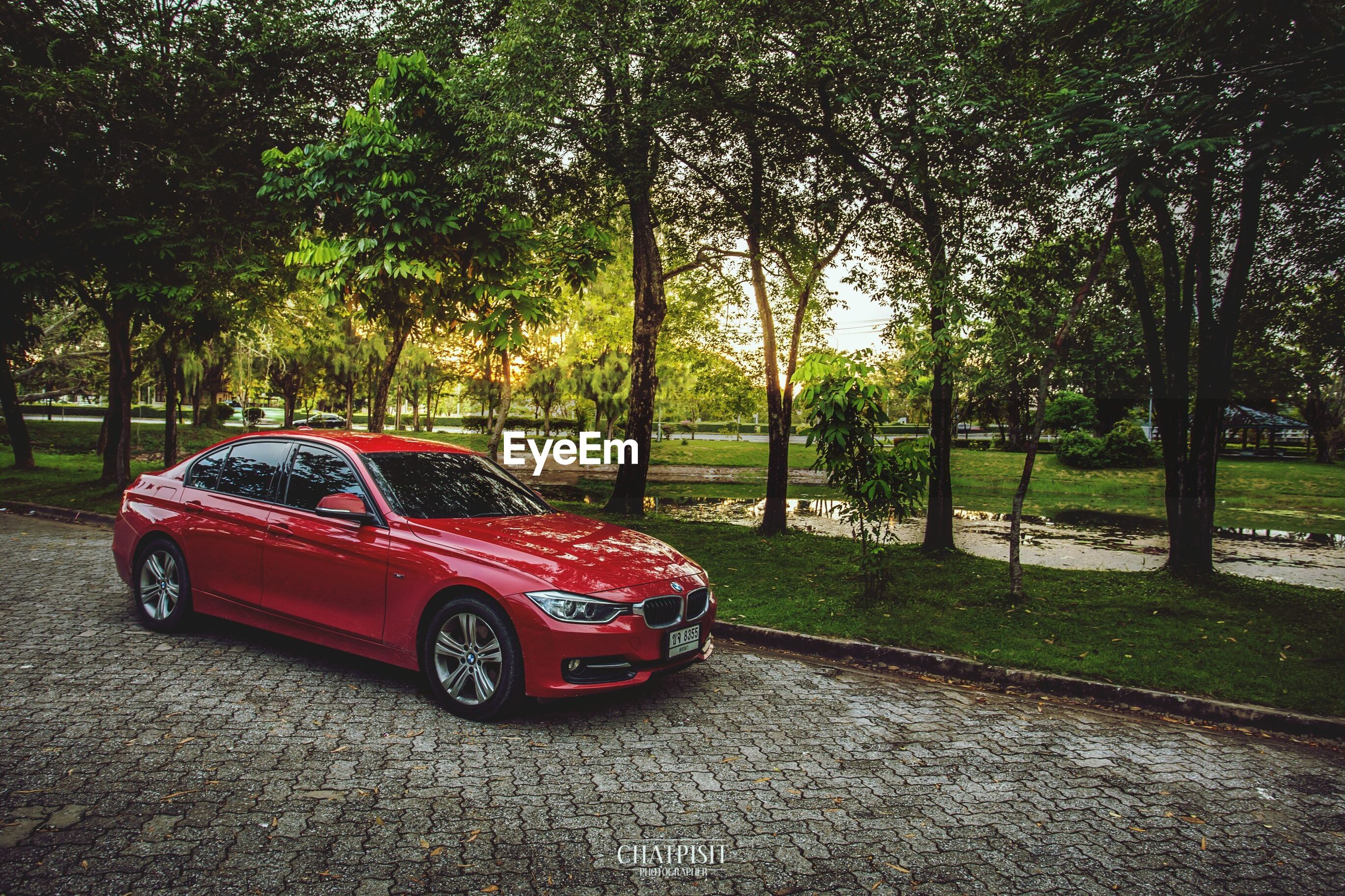 tree, transportation, land vehicle, car, mode of transport, road, red, street, grass, park - man made space, outdoors, day, sunlight, green color, no people, growth, shadow, park, travel, absence
