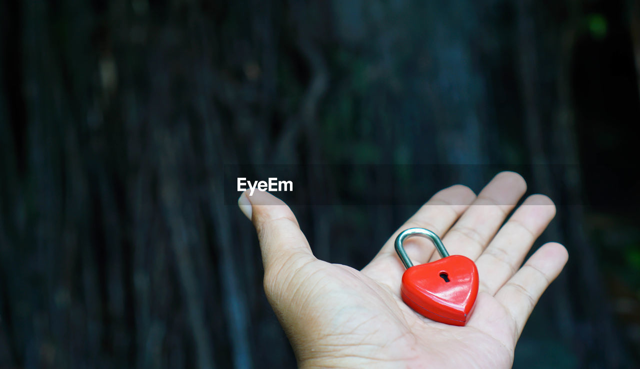 human hand, hand, human body part, holding, one person, focus on foreground, body part, finger, red, human finger, real people, personal perspective, close-up, unrecognizable person, day, lifestyles, leisure activity, outdoors, nature, human limb