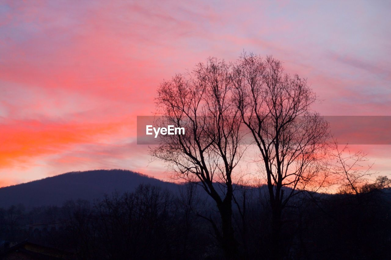 bare tree, sunset, beauty in nature, tranquil scene, tree, scenics, tranquility, nature, orange color, silhouette, sky, outdoors, branch, landscape, no people, lone, mountain, day