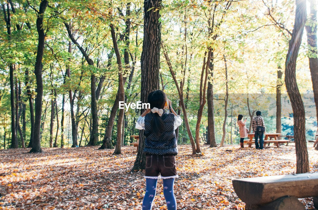 Rear View Of Girl Photographing Parents In Forest