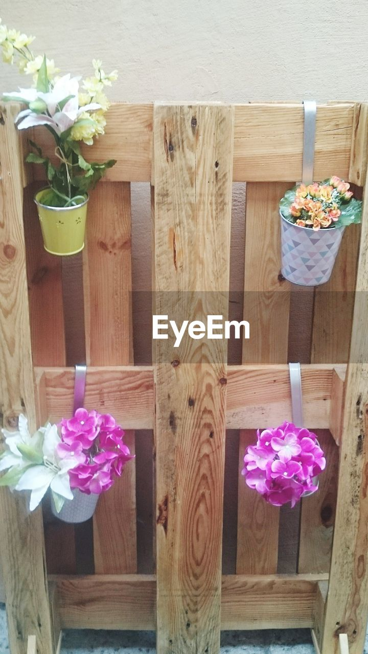wood - material, flower, no people, table, pink color, high angle view, indoors, freshness, day, close-up, nature, flower head