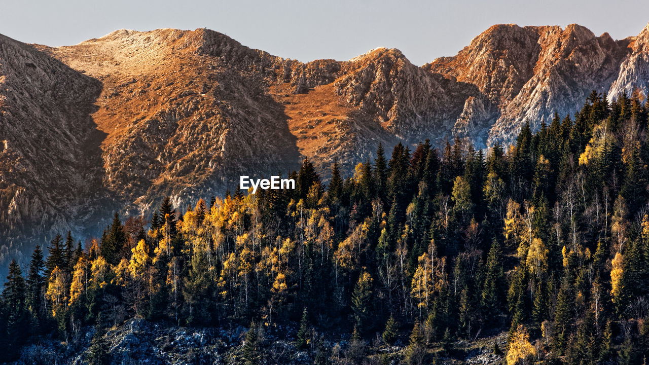 mountain, scenics - nature, beauty in nature, tranquil scene, mountain range, tranquility, tree, plant, non-urban scene, no people, environment, nature, day, sky, landscape, idyllic, remote, land, rock, formation, outdoors, mountain peak, pine tree, coniferous tree