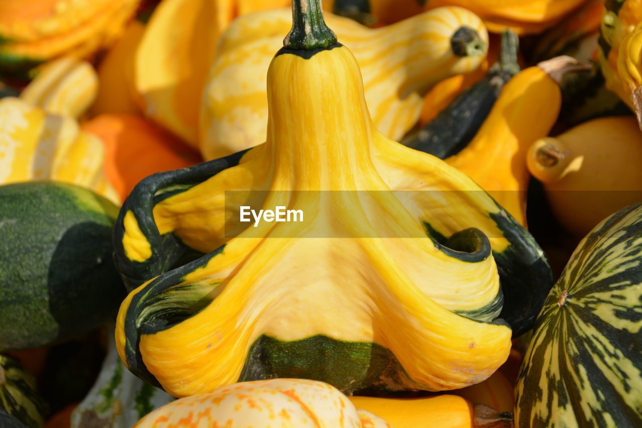 food and drink, food, freshness, market, for sale, close-up, healthy eating, wellbeing, yellow, retail, no people, still life, choice, vegetable, market stall, fruit, day, orange color, focus on foreground, small business, retail display, orange