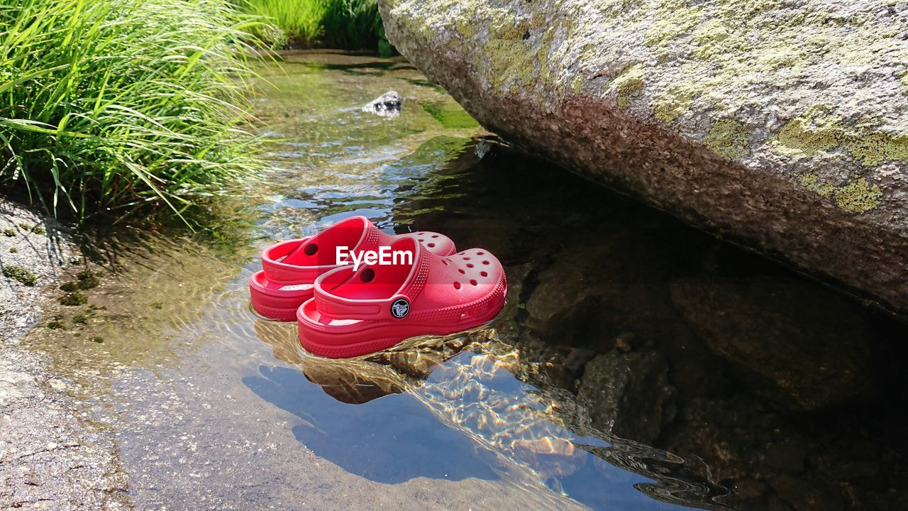 water, nature, day, high angle view, solid, rock, no people, pink color, rock - object, outdoors, red, tranquility, lake, sunlight, shoe, beauty in nature, plant, toy, floating on water