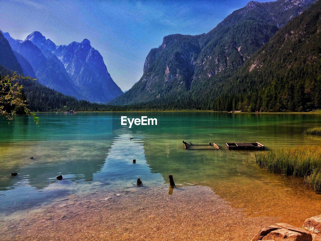 mountain, water, beauty in nature, scenics - nature, lake, mountain range, tranquil scene, tranquility, nature, sky, idyllic, day, non-urban scene, tree, reflection, plant, bird, no people, vertebrate, outdoors