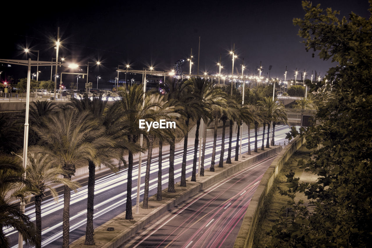 Palm Trees Amidst Roads In City Against Sky At Night