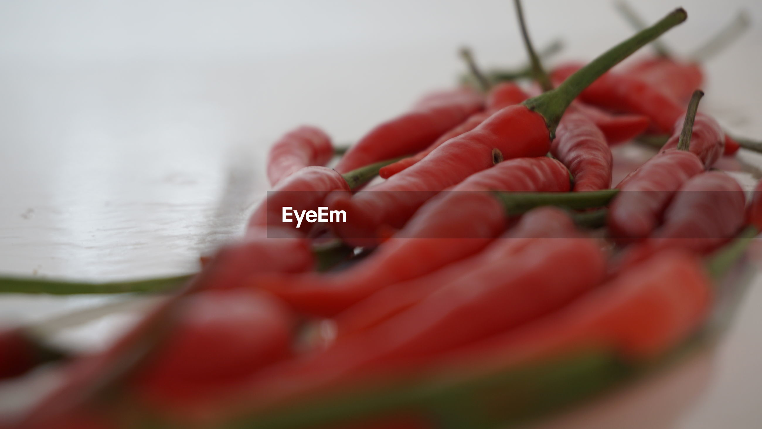 CLOSE-UP OF RED CHILI PEPPER