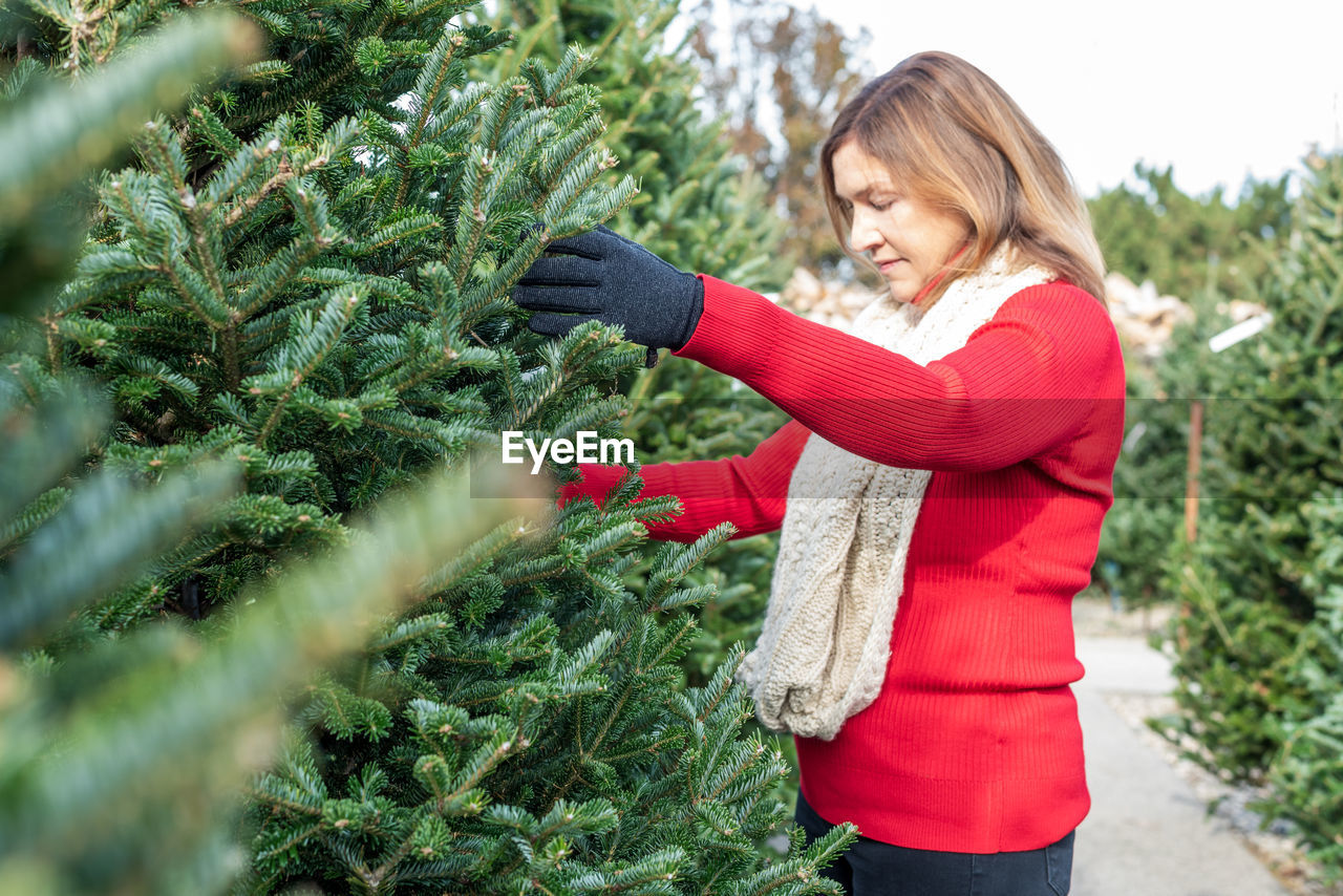 Woman looking at trees while standing in christmas tree farm