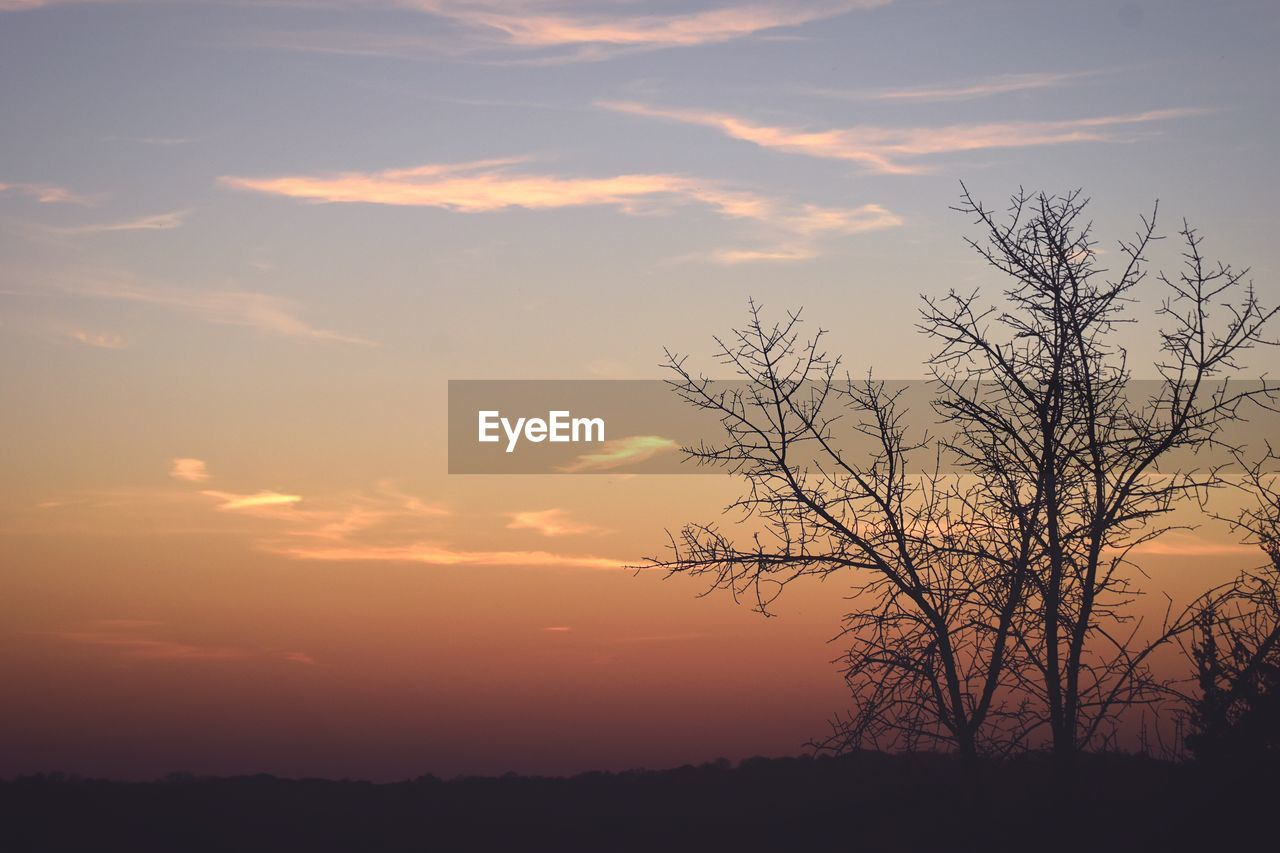 sunset, tranquility, tranquil scene, beauty in nature, nature, scenics, orange color, silhouette, sky, tree, outdoors, no people, landscape, bare tree, lone, day