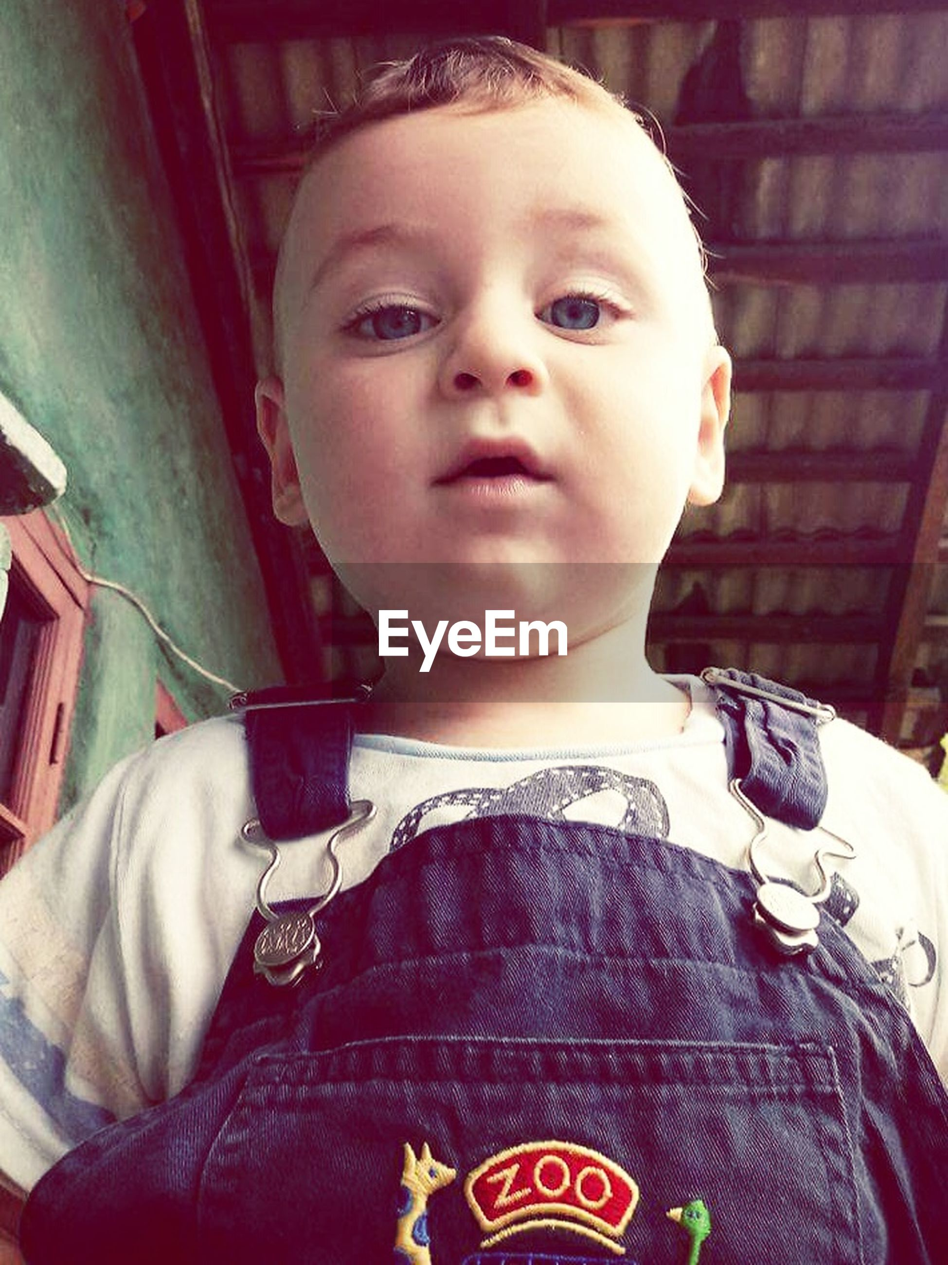 childhood, real people, front view, one person, looking at camera, portrait, cute, indoors, lifestyles, boys, day, close-up, people