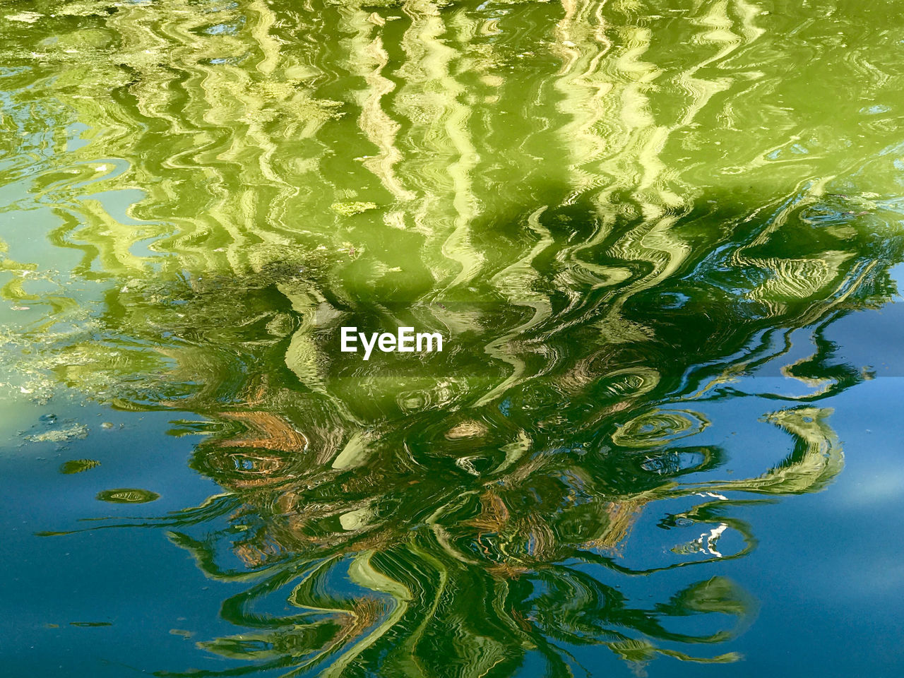water, green color, waterfront, reflection, no people, outdoors, rippled, day, motion, close-up, nature
