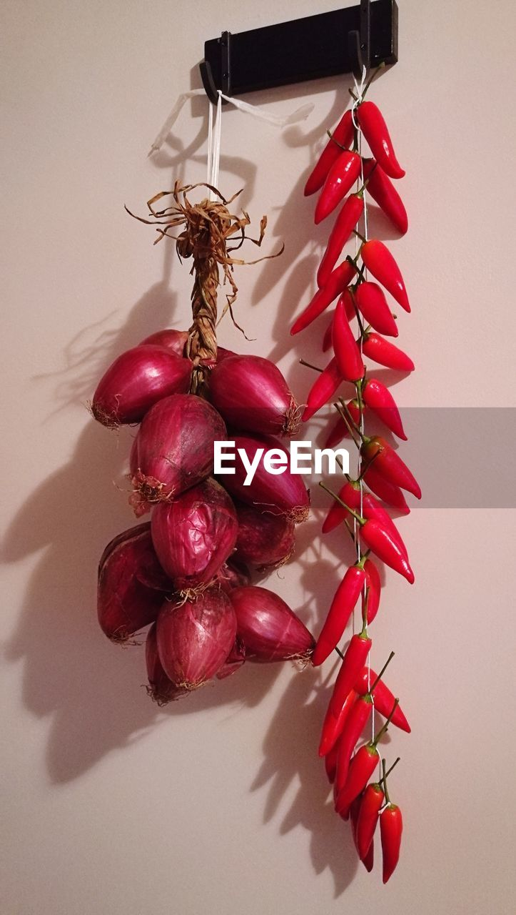 Close-up of onions and red chili peppers hanging against white wall
