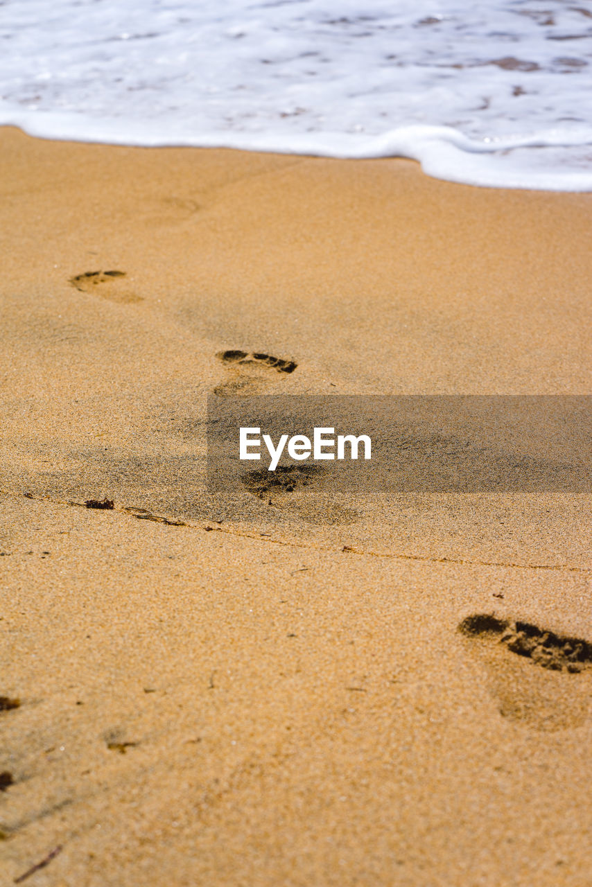 sand, land, beach, water, sea, no people, nature, day, motion, tranquility, footprint, beauty in nature, outdoors, wave, brown, high angle view, sport, paw print, beige
