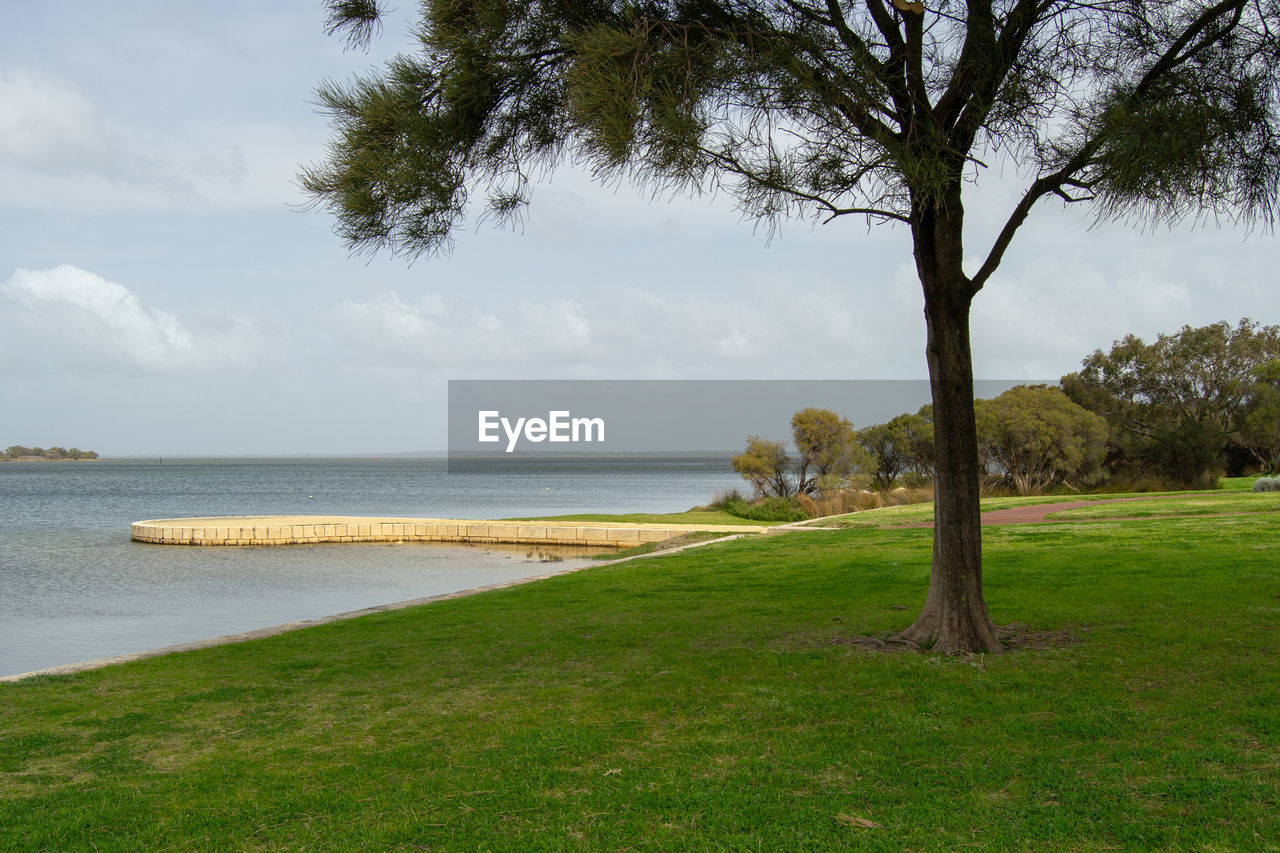 water, plant, tree, grass, sky, land, tranquility, nature, scenics - nature, beauty in nature, tranquil scene, sea, growth, green color, no people, day, beach, outdoors, cloud - sky, horizon over water