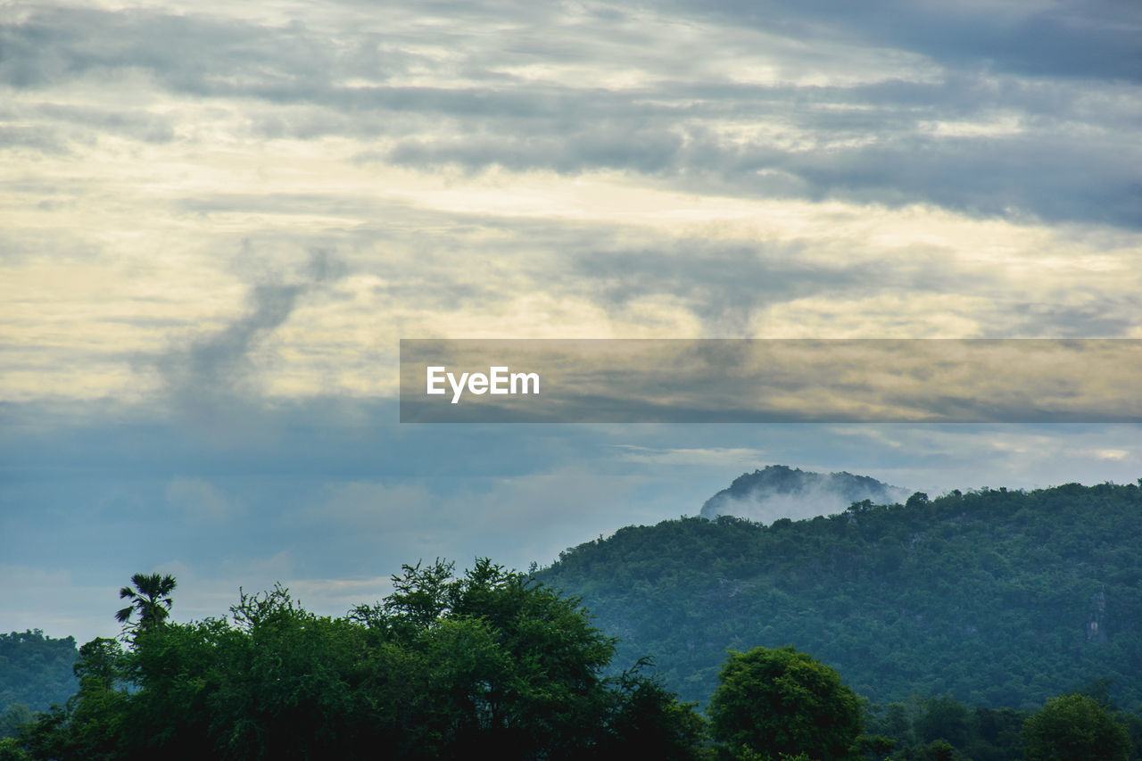 cloud - sky, tree, sky, beauty in nature, scenics - nature, plant, tranquility, tranquil scene, nature, no people, non-urban scene, idyllic, environment, outdoors, day, growth, mountain, landscape, sunset