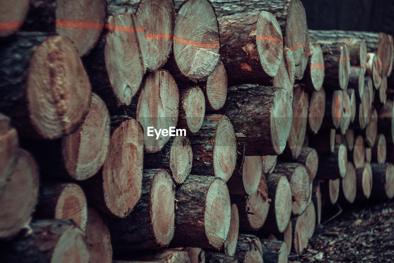 stack, large group of objects, abundance, log, timber, wood - material, firewood, lumber industry, no people, close-up, wood, full frame, tree, backgrounds, deforestation, arrangement, heap, forest, woodpile, nature, outdoors, order