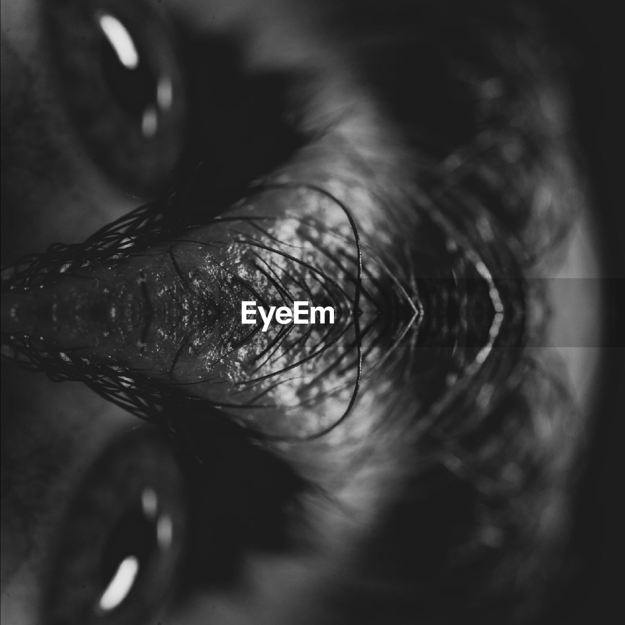 Cropped image of human eye