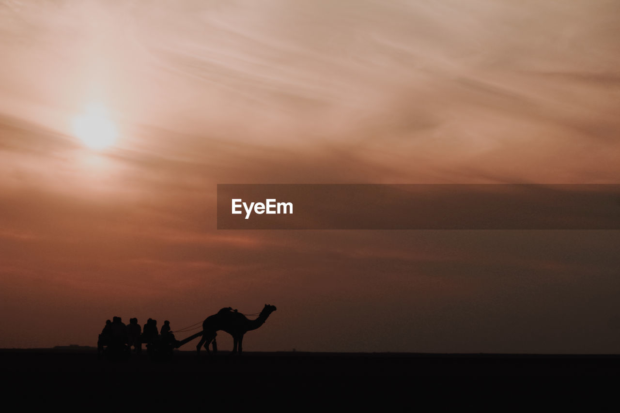 SILHOUETTE PEOPLE RIDING HORSE IN SUNSET