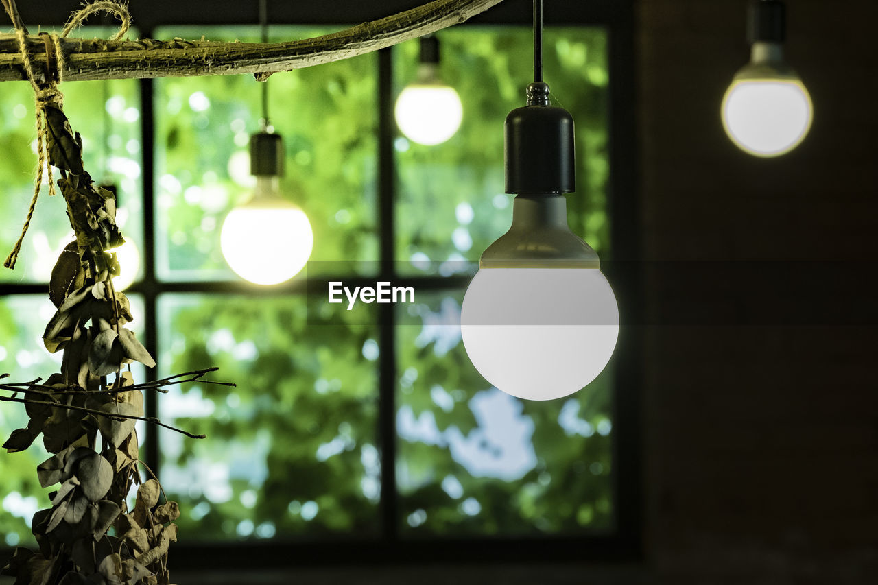 Illuminated light bulbs hanging from ceiling at home