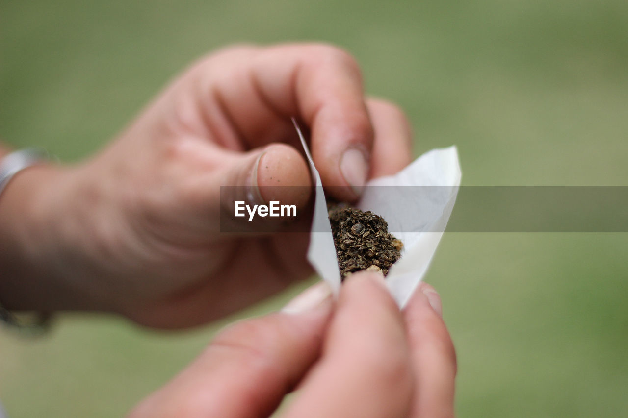 Cropped Hands Of Man Rolling Marijuana Joint