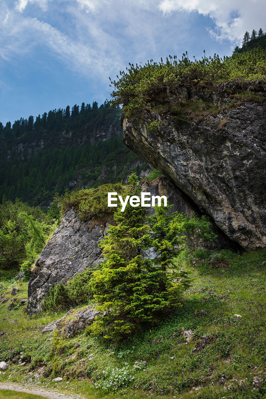 plant, sky, rock, beauty in nature, tree, rock - object, nature, solid, tranquility, tranquil scene, growth, cloud - sky, no people, day, land, green color, scenics - nature, non-urban scene, grass, outdoors, formation, eroded