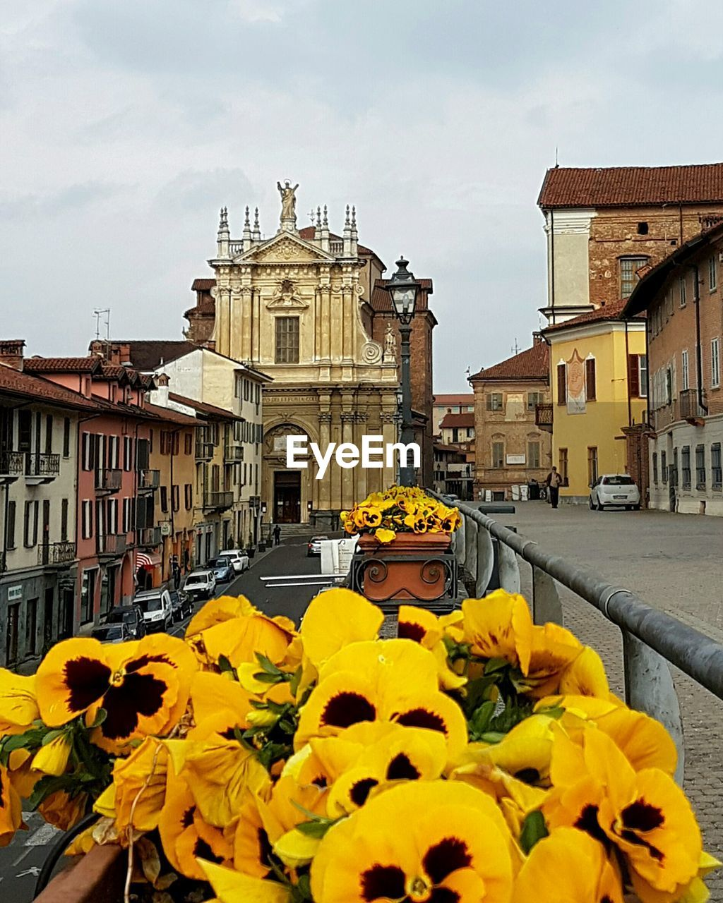 yellow, architecture, flower, built structure, building exterior, outdoors, day, plant, cloud - sky, nature, sky, fragility, real people, blooming, beauty in nature, city, black-eyed susan, flower head