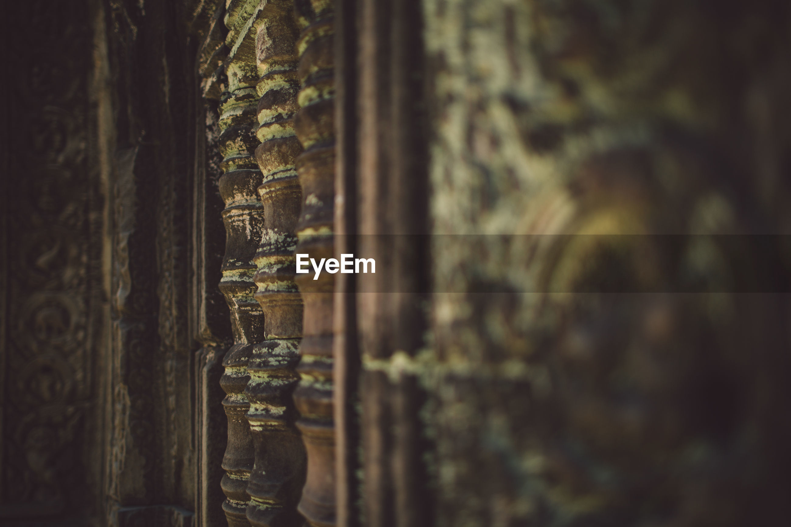 selective focus, close-up, no people, wood - material, old, textured, weathered, pattern, tree, day, brown, tree trunk, backgrounds, full frame, nature, indoors, built structure, architecture, trunk
