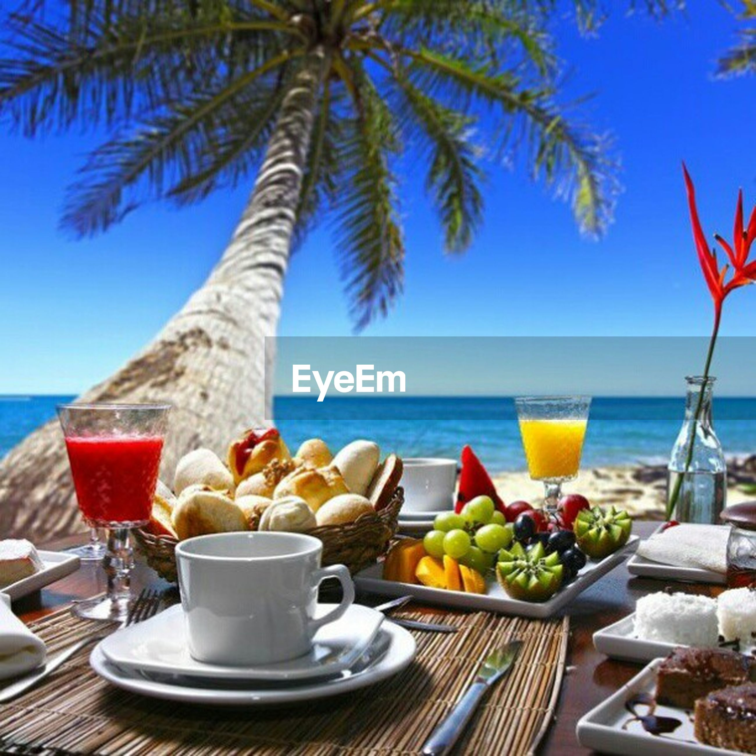 sea, horizon over water, table, food and drink, water, beach, freshness, drink, blue, still life, sunlight, nature, potted plant, refreshment, day, chair, beauty in nature, sky, shore, healthy eating